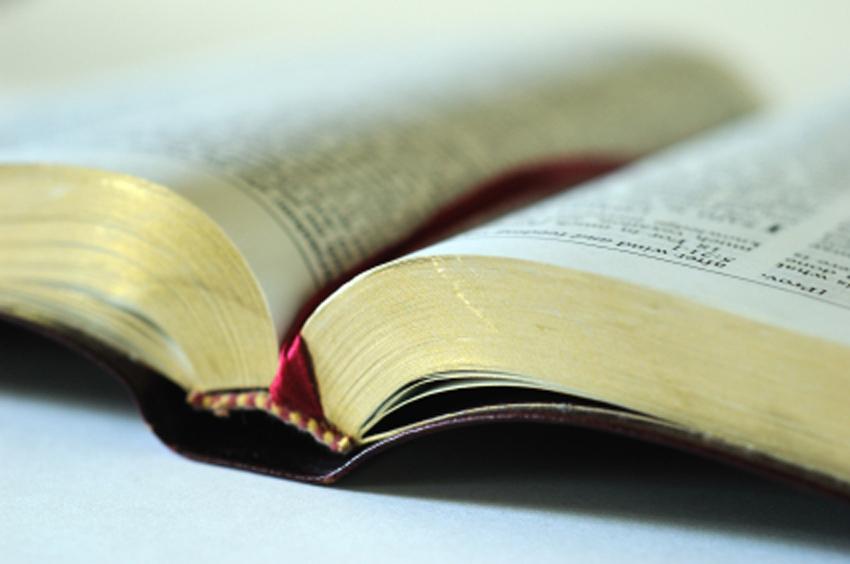 Book of Mormon: Condemn It Not